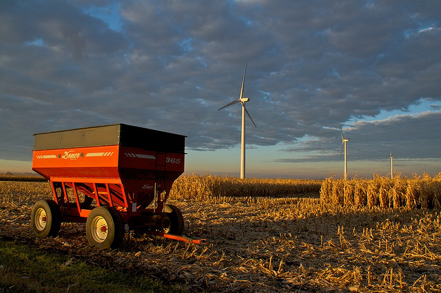 corn and wind turbine