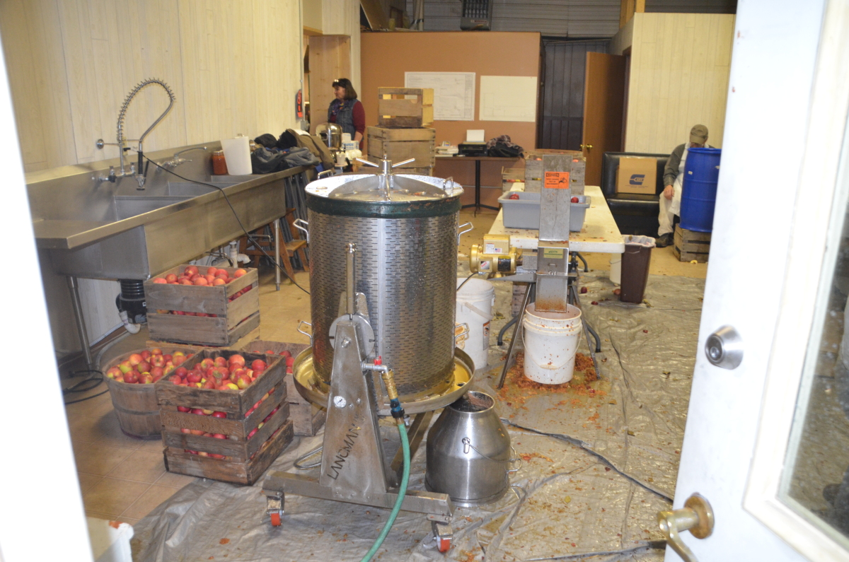 Making apple cider at the Inadvertent Cafe