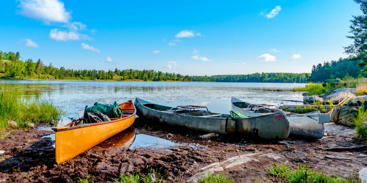 canoes on a lake with trees